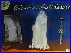 Life-size Ghost Reaper 6 Ft Tall! Sings! Halloween! NEW