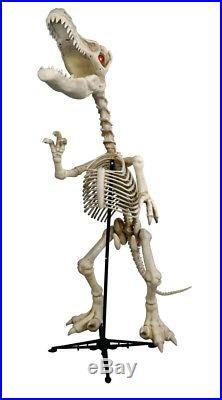 NEW Dinosaur Standing Skeleton 6ft Lights Up Roaring Raptor Sounds LED Animated